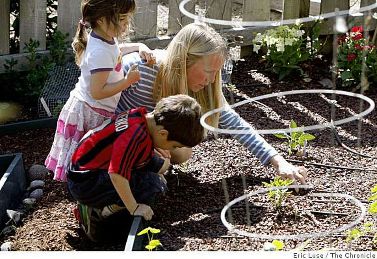 Elizabeth Singh plants seeds with her son Arjun,6, and Soraya,3, in the family garden at their home photographed in San Anselmo on Monday, May 11, 2009.