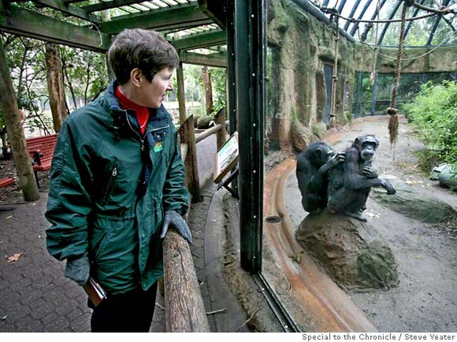 Mary Healy, Director/CEO of the Sacramento Zoological Society, stops by the chimpanzee enclosure while making her rounds at the Sacramento Zoo on Friday, Jan. 11, 2008.(Steve Yeater/special to the chronicle)  Ran on: 01-19-2008  Mary Healy, director of the Sacramento Zoo and past president of the Association of Zoos & Aquariums, stops by the chimpanzee enclosure during her rounds of the capital city facility.  Ran on: 01-19-2008  Mary Healy, director of the Sacramento Zoo and past president of the Association of Zoos & Aquariums, stops by the chimpanzee enclosure during her rounds of the capital city facility. Photo: Steve Yeater