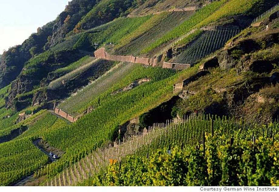 MOSEL19 For MOSEL19, Wine ; Steep hillside vineyards in the Mosel-Saar-Ruwer region in Germany produce outstanding Riesling wines. Courtesy: German Wine Institute ; For: CENTERPIECE for June 19; Inserted into mediagrid on 6/12/03 in . / German Wine Institute 2 each, pls Photo: Courtesy German Wine Institute