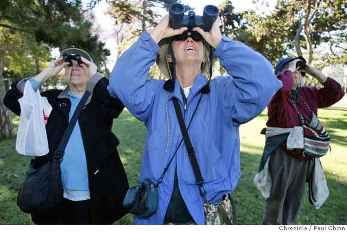 From left, Sandy Prosnitz, Ruth Tobey and Bei Brown scan treetops for birds in Lakeshore Park at Lake Merritt hoping to identify bird species for an event organized by the Golden Gate Audubon Society in Oakland, Calif. on Wednesday, Nov. 28, 2007. PAUL CHINN/The Chronicle **Sandy Prosnitz, Ruth Tobey, Bei Brown MANDATORY CREDIT FOR PHOTOGRAPHER AND S.F. CHRONICLE/NO SALES - MAGS OUT