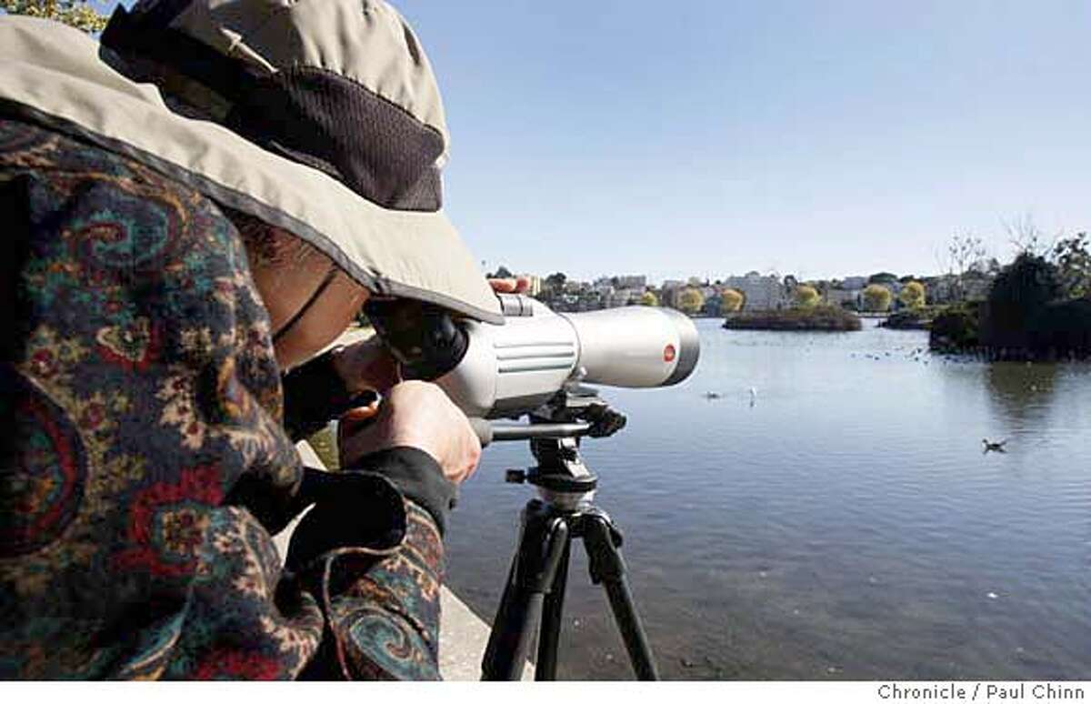Hilary Powers used a spotting scope to identify bird species at an event organized by the Golden Gate Audubon Society at Lake Merritt's Lakeshore Park in Oakland, Calif. on Wednesday, Nov. 28, 2007. PAUL CHINN/The Chronicle **Hilary Powers MANDATORY CREDIT FOR PHOTOGRAPHER AND S.F. CHRONICLE/NO SALES - MAGS OUT