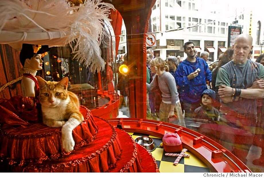 Rob Gammel, right, checks out Clarence, an 8-month-old orange tabby sitting inside the Beach Blanket Babylon Window as passersby check out the kitties in the windows. Photo: Michael Macor