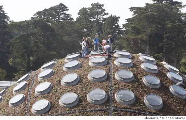 academy28_276_mac.jpg Riggers and electricians gather atop the living roof of the Academy building where they are installing lighting systems on the 4 story Living Rain Forrest dome. The new California Academy of Sciences in Golden Gate Park, well under construction begins to take shape with many interesting displays and exhibits soon to come. Michael Macor / The Chronicle Photo taken on 10/26/07, in San Francisco, CA, USA Photo: Michael Macor