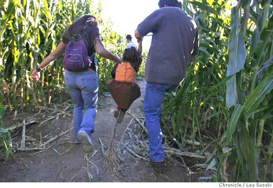 "cornmaze_084_ls.jpg  From right: Alan Holman of Sacramento, Brooke Abess, 3 of Vallejo and Carol Childo of Sacramento. Holman and Chido ""fly"" Brook Abess on her broom through the corn maze as they try to make their way out. The world's largest corn maze, according to the Guiness Book of World Records, is the 40 acre corn maze at Cool Patch Pumpkins in Dixon, CA. Lea Suzuki / The Chronicle Photo taken on 10/21/07 in Dixon, CA, USA. Photo: Lea Suzuki"