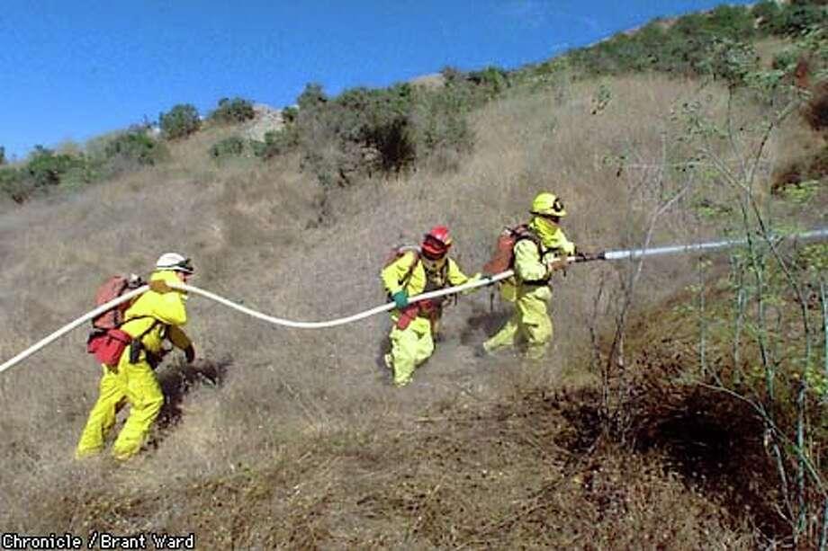 Volunteer firefighters tackle a roadside blaze south of Petaluma.