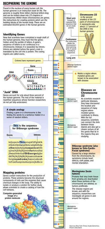 Whats Next For Genome Landmark Project Is Only The Start Of