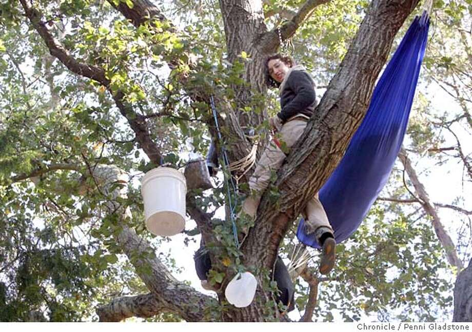 treesitters04  Jess, would not give last name and is not a Cal student. She sleeps up in the tree to save it.  tree-sitters in Berkeley are occupying some oaks and a redwood in a grove on the west side of the UC Berkeley football stadium. They're protesting a plan to cut down the trees for a new Cal athletics facility. Leader of tree sitters is apparently Zachary Runningwolf, who ran unsuccessfully for Berkeley mayor last month  Event on 12/3/06 in Berkeley.  Penni Gladstone / The Chronicle MANDATORY CREDIT FOR PHOTOG AND SF CHRONICLE/ -MAGS OUT Photo: Penni Gladstone