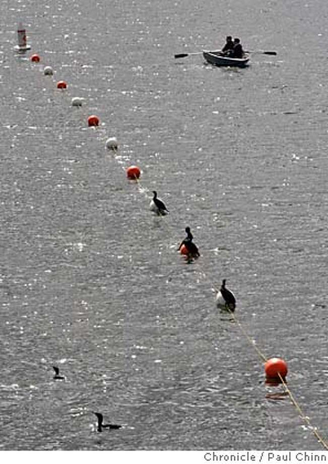 Taking advantage of a break between storms, two fishermen position their boat to find just the right spot among the cormorants at Lafayette Reservoir in Lafayette, Calif. on 3/1/06. The rain is forecast to return to the Bay Area region Wednesday night and into Thursday.  PAUL CHINN/The Chronicle MANDATORY CREDIT FOR PHOTOG AND S.F. CHRONICLE/ - MAGS OUT Photo: PAUL CHINN