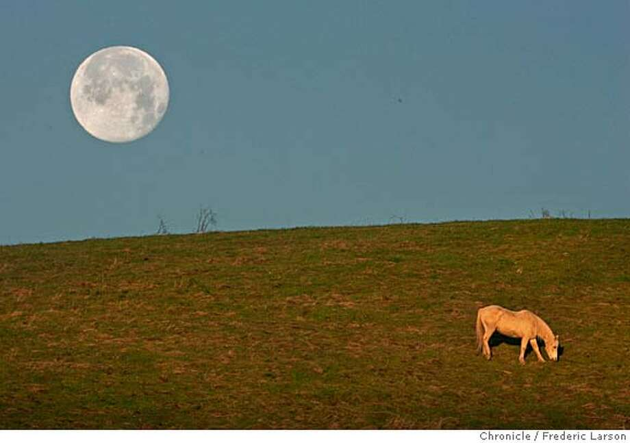 {object name} On Sunday morning at sunrise a lone horse grazes peacefully on a grassy hillside of �Horse Hill� in Mill Valley, as the full moon sets behind Mount Tamalpais. The open space of Mill Valley contains a variety of habitats within its 225 acres, including grasslands, bay/oak woodlands, and redwood/Douglas fir forests. The fire roads in this preserve are popular with hikers, bicyclists, and equestrians, offering several relatively level routes along a spectacular ridge with outstanding views of San Francisco and Mount Tamalpais. The Middle Summit Fire Road rises steeply in the northern section of the preserve to connect with the Blithedale Summit Open Space Preserve, and to points beyond. 1/15/06  Frederic Larson Photo: Frederic Larson