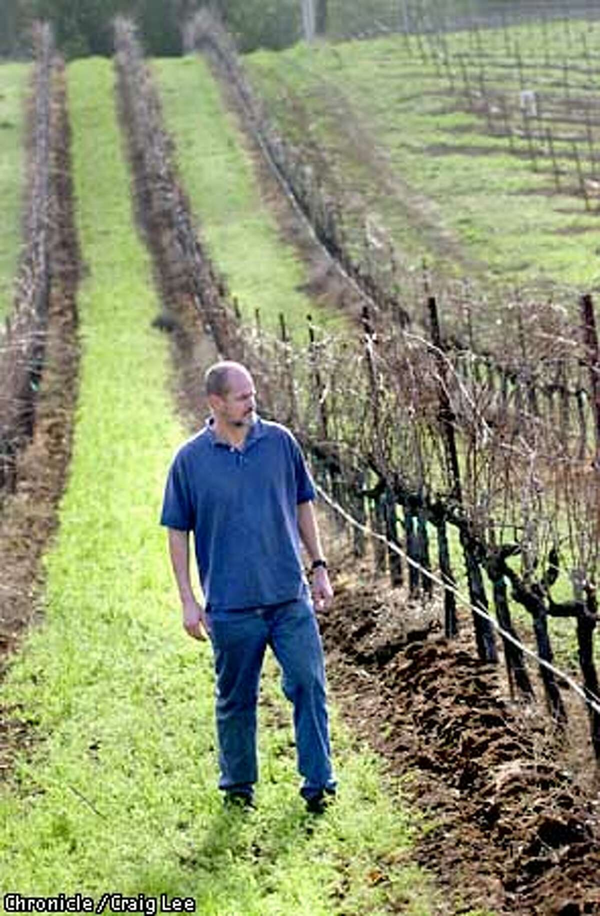 FRANC2-C-24JAN03-FD-CL Jon-Mark Chappellet, at his family vienyard by the vines that produce their Cabernet Franc wines. This is at Chappellet Vineyard in the Napa Valley. Photo by Craig Lee/San Francisco Chronicle