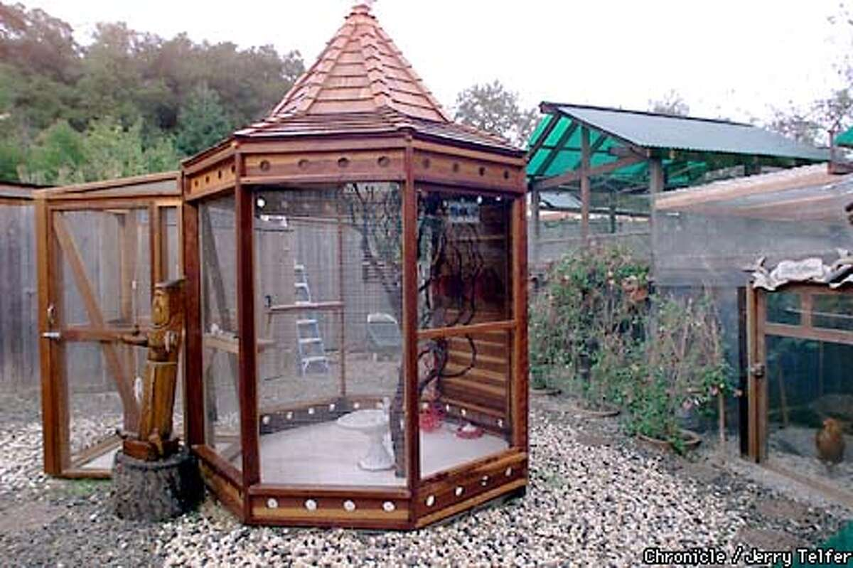 A new pagoda-shaped structure houses parakeets that would not be happy with their larger cousins in the earlier aviaries built by a bird rescue enthusiast in Los Altos Hills. 13468 Three Forks Lane CHRONICLE STAFF PHOTO BY JERRY TELFER