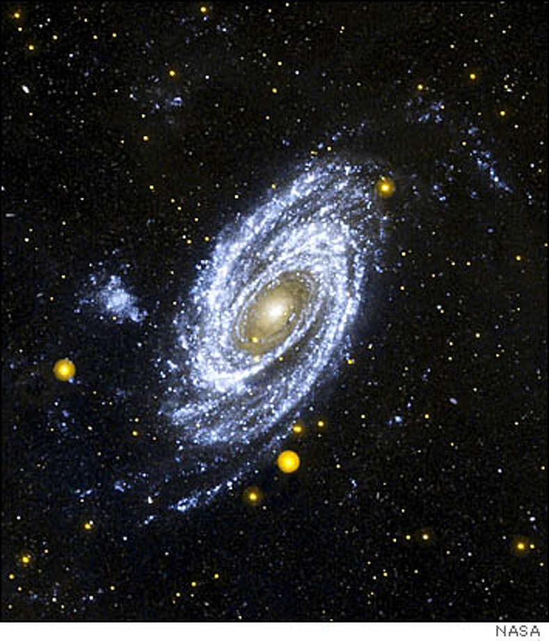 The M81 spiral galaxy is shown in this image from NASA's Galaxy Evolution Explorer. The large fluffy bluish-white material to the left of M81 is a neighboring galaxy called Holmberg IX.