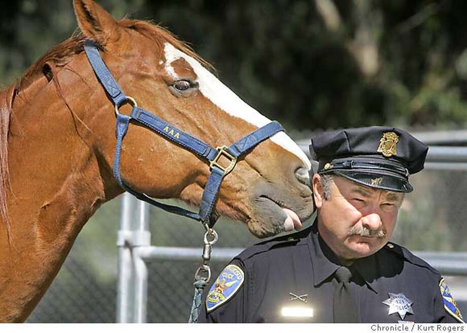 Officer Chris Olocco (cq) of the San Francisco Police mounted unit gets a lick from AAA a 15 year old Quarter Horse gelding that retiring as of today.  The San Francisco Police retired three horses today they will live there life out on a ranch in Sonoma. TUESDAY, APRIL 10, 2007 KURT ROGERS SAN FRANCISCO THE CHRONICLE  KURT ROGERS/THE CHRONICLE Photo: KURT ROGERS