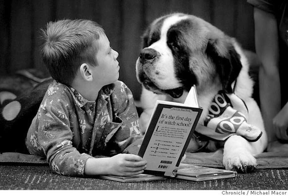 "7 year old Alec Gauthier makes sure that '""Willow"" a St. Bernard, is listening to every word. PAWS to Read program at the Pleasanton Public Library. Children practice their reading skills in a program that matches kids up with dogs from the local animal shelter. Photo: Michael Macor"