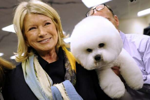 Martha Stewart stops to look at a bichon frise in the staging area during the 136th Westminster Kennel Club  Annual Dog Show on Feb. 13, 2012 in New York. Stewart's chow chow, Genghis Khan, won best in breed on the first night of competition. (TIMOTHY A. CLARY / AFP/Getty Images)