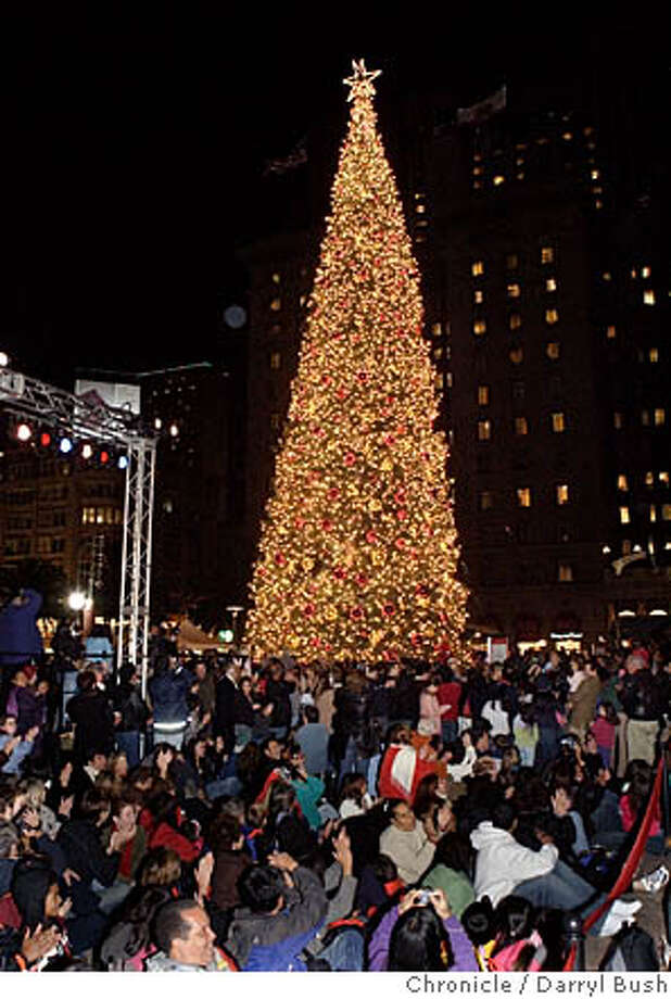 tree_0002_db.jpg  tree lighting in Union Square.  Event on 11/25/05 in San Francisco.  Darryl Bush / The Chronicle MANDATORY CREDIT FOR PHOTOG AND SF CHRONICLE/ -MAGS OUT Photo: Darryl Bush