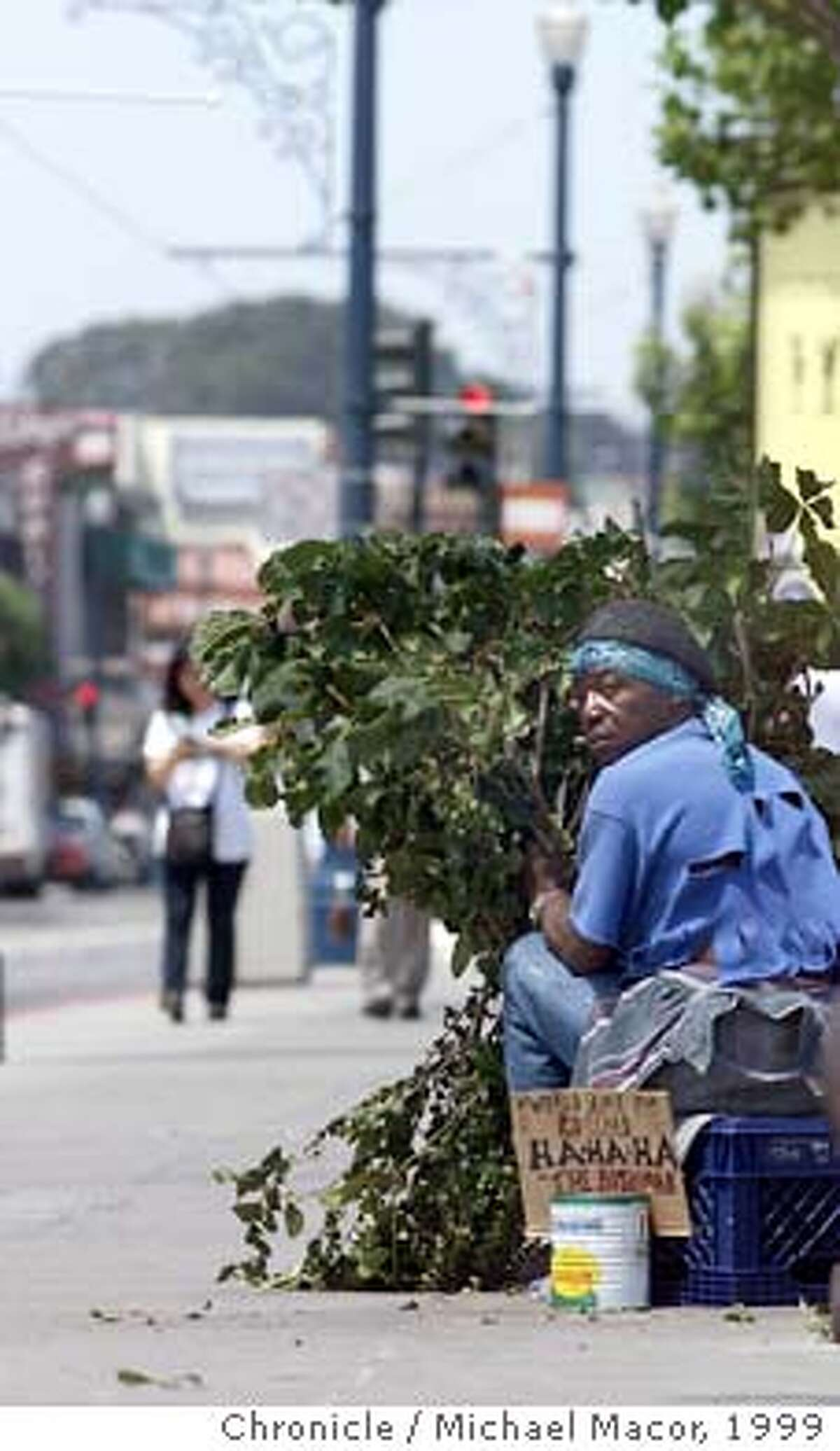 """BUSHMAN 2-C-12JUL99-MN-MAC David """"Bushman"""" Johnson has been scaring tourists along Fisherman's Wharf for the past 20 years. Hiding behind tree branches and jumping out at the last moment. Johnson watches for his next victim. by Michael Macor/The Chronicle"""