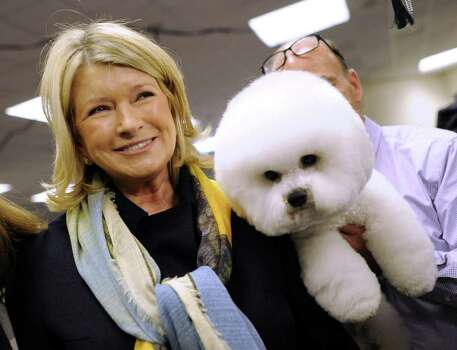 Martha Stewart stops to look at a Bichon Frises in the staging area during the 136th Westminster Kennel Club  Annual Dog Show held at Madison Square Garden. February 13, 2012.  AFP PHOTO / TIMOTHY A. CLARY Photo: TIMOTHY A. CLARY, AFP/Getty Images / AFP