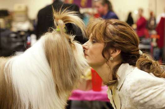 NEW YORK - FEBRUARY 13:   Nikkie Kinzigner performs a trick with Tibetan Terrier Reese, winner of an award of merit, backstage at the Westminster Kennel Club Dog Show on February 13, 2012 in New York City.  The Westminster Kennel Club Dog Show first held in 1877, is the second-longest continuously held sporting event in the U.S., second only to the Kentucky Derby. Photo: Michael Nagle, Getty Images / 2012 Getty Images
