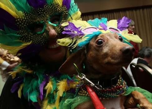 Dressed for the occasion, Risa Castagno, of the Brooklyn borough of New York, holds her dachshund Bosco as he is photographed as they attend the 2012 Pre-Westminster Fashion Show Friday Feb. 10, 2012 in New York.  (AP Photo/Tina Fineberg) (AP)