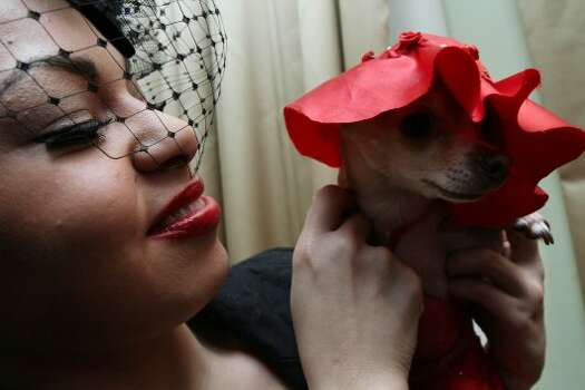 Dressed for the occasion, Katiria Toro, from Meriden, Conn., poses for a photograph with her chihuahua Precious Princess as they attend the 2012 Pre-Westminster Fashion Show Friday Feb. 10, 2012 in New York.  Toro designed her dog's hat.  (AP Photo/Tina Fineberg) (AP)