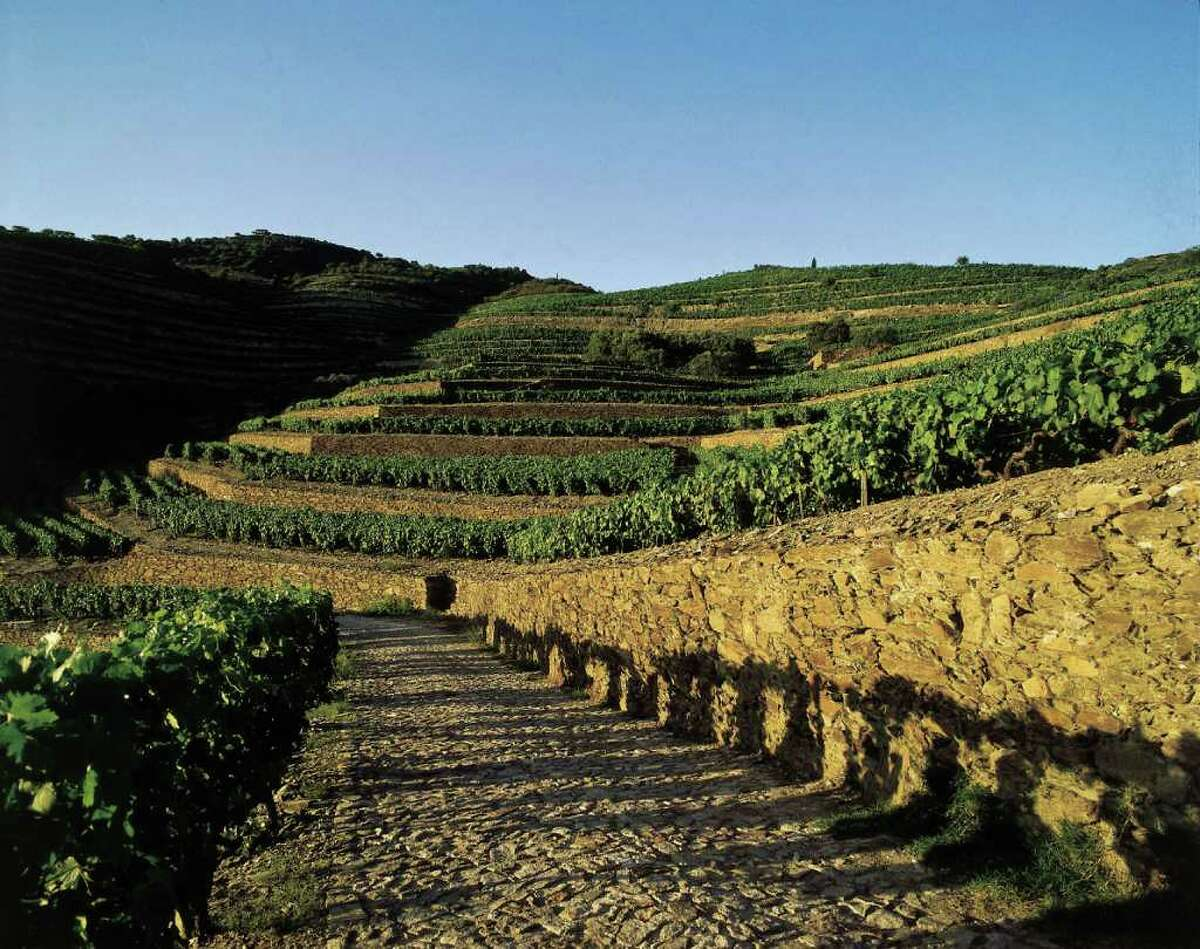 Quinta do Bomfim is the Symington Family Estates' most famous part of its vineyard.