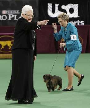 Handler Cheri Koppenhaver, right, reacts after judge Patricia Laurans, left, declared Cinders, a wirehaired dachshund, the winner of the hound group at the 136th annual Westminster Kennel Club dog show in New York, Monday, Feb. 13, 2012. (AP Photo/Seth Wenig) (AP)