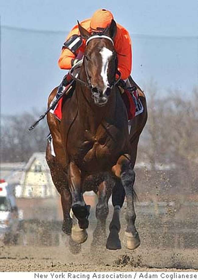 ** FILE ** In this hand out photo provided by New York Racing Association, Lost in the Fog, ridden by Russell Baze, cruises home in the $150,000 Bay Shore in this April 9, 2005 photo at Aqueduct in New York. (AP Photo/New York Racing Association, Adam Coglianese) APRIL 5 2005 PHOTO Photo: ADAM COGLIANESE