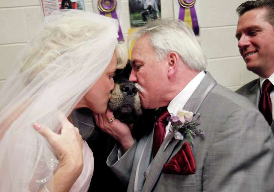 Debbie Parsons, left, and Brad Slayton kiss their dog, a Tibetan mastiff named Major, after they were married at the 136th annual Westminster Kennel Club dog show in New York. Photo: Seth Wenig, Associated Press / AP