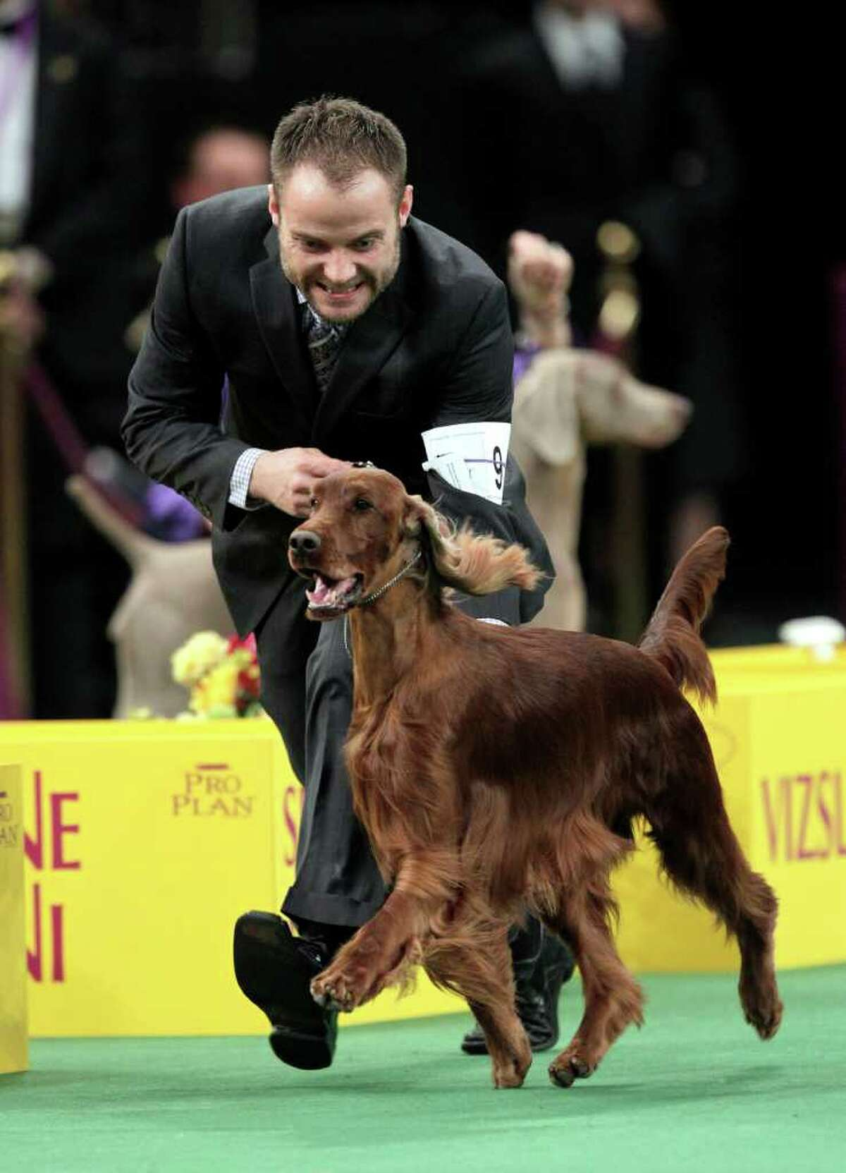 Adam Bernardin reacts as Shadagee Caught Red Handed, an Irish setter, is declared the Best of Sporting Group at the 136th annual Westminster Kennel Club dog show in New York, Tuesday, Feb. 14, 2012. (AP Photo/Seth Wenig)