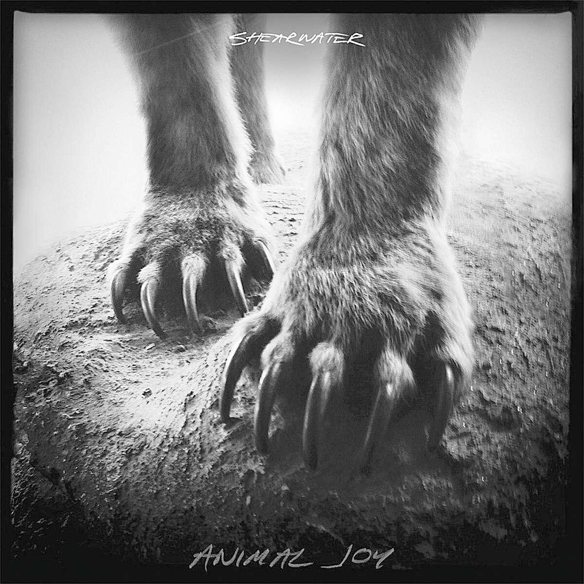"Sheerwater's ""Animal Joy"""