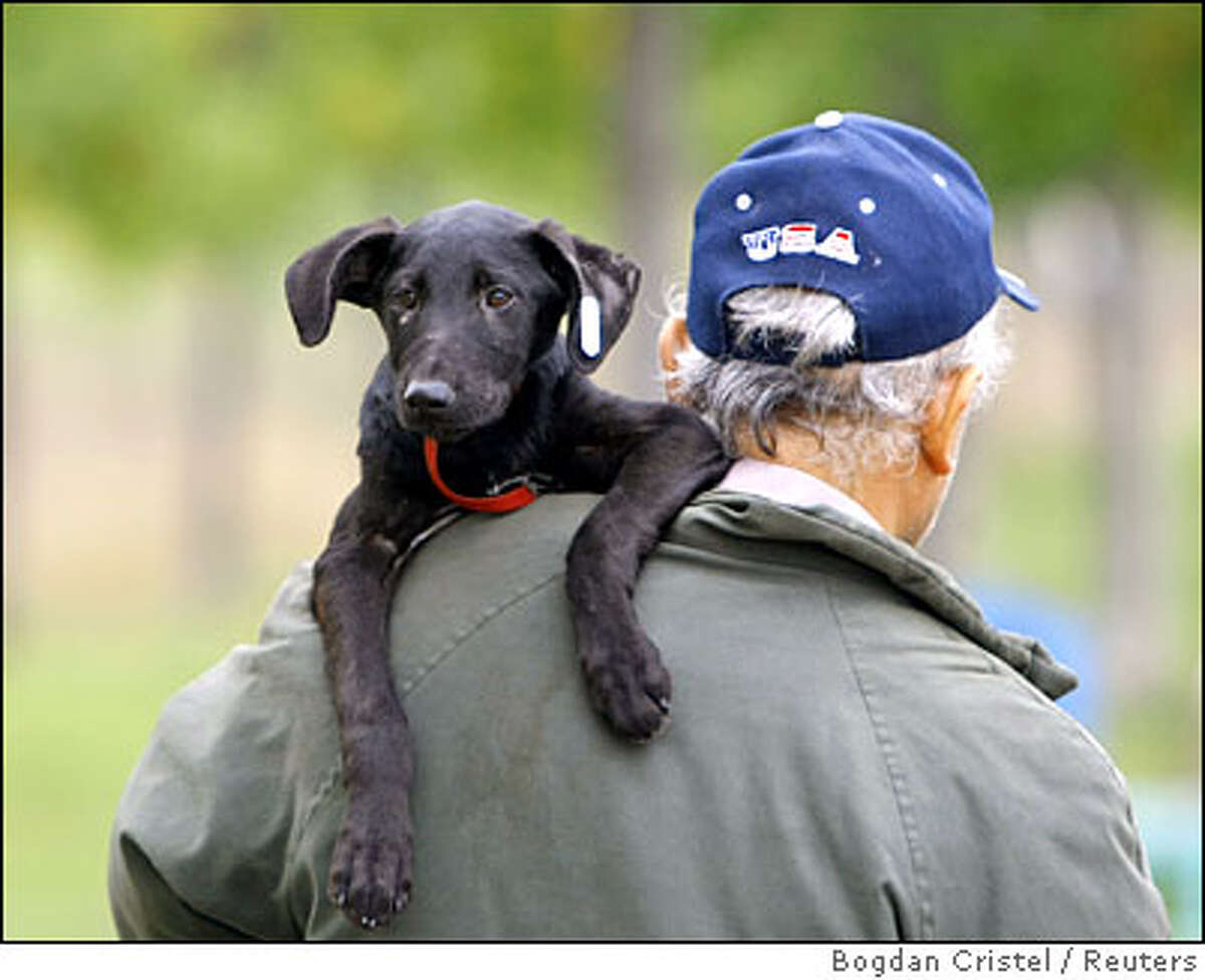 A man leaves a stray dog adoption event with his new puppy after adopting it in Bucharest