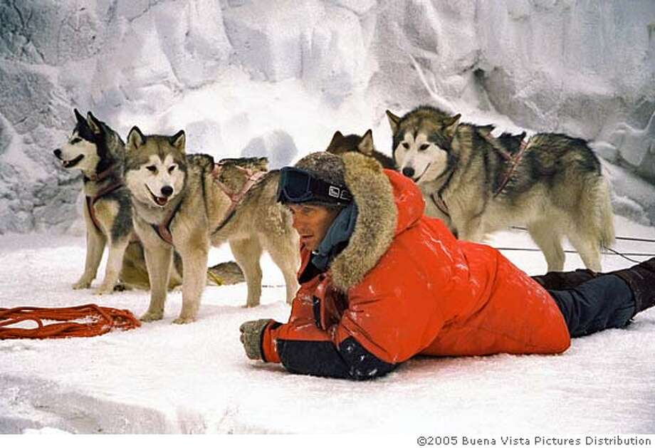 (L-R) Paul Walker, Max, Maya and Shadow IN Eight Below. 2005 Buena Vista Pictures Distribution and Winking Productions GmbH & Co. KG Photo: CHRIS LARGE