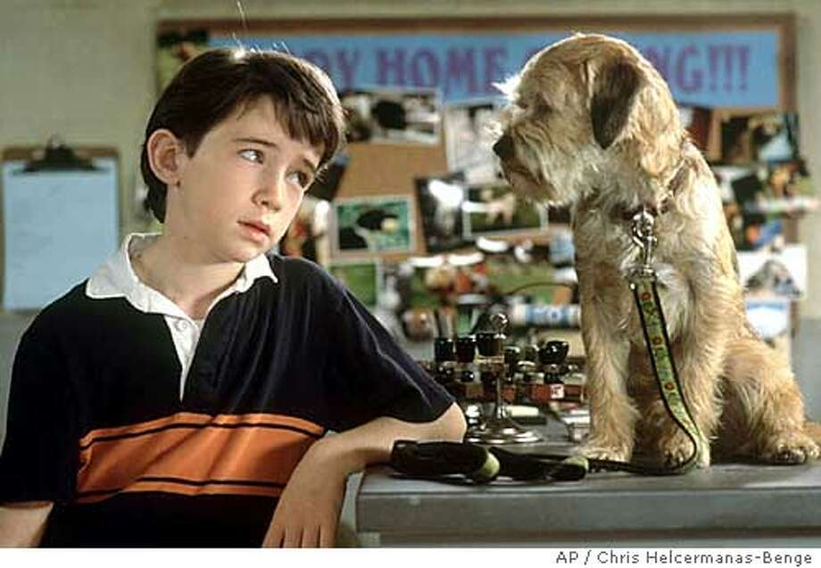"Owens (Liam Aiken) summer gets a lot more interesting when he realizes he can understand what his new dog, Hubble (voiced by Matthew Broderick), is saying in Metro-Goldwyn-Mayers family adventure comedy ""Good Boy."" (AP Photo/Chris Helcermanas-Benge) Photo: CHRIS HELCERMANAS-BENGE"
