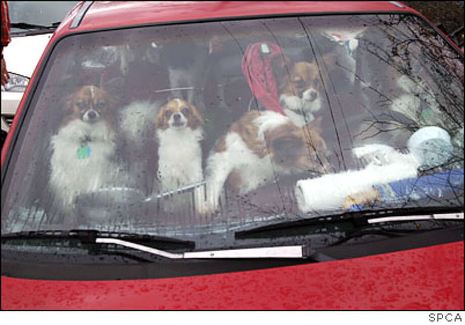 Do not leave people or pets in enclosed parked vehicles.