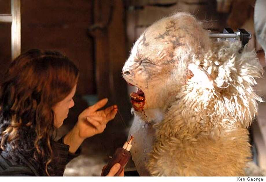 #7 WETA Workshop employee working on weresheep in BLACK SHEEP directed by Jonathan King. Photo credit: Ken George An IFC First Take and Weinstein Company release. Photo: -