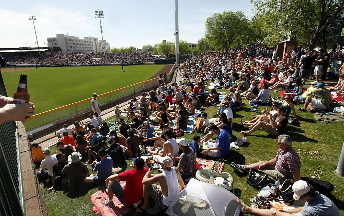 Thousands of baseball fans watch the Giants game from the grassy knoll at Scottsdale Stadium on Saturday.