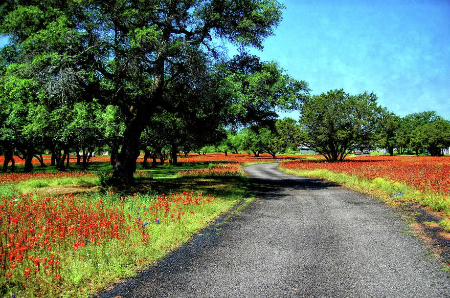 Old Spanish Trail in Marble Falls. (Karen Freer Tawater) Photo: Texas Hill Country