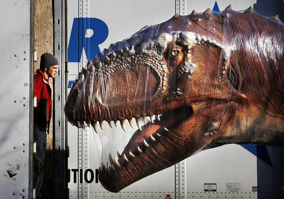 Saran Wrap just makes them mad:A realistic animatronic Gigantosaurus confronts Travis LeVay during unloading of prehistoric critters for a temporary dinosaur exhibit at the Memphis Zoo. Photo: Jim Weber, Associated Press