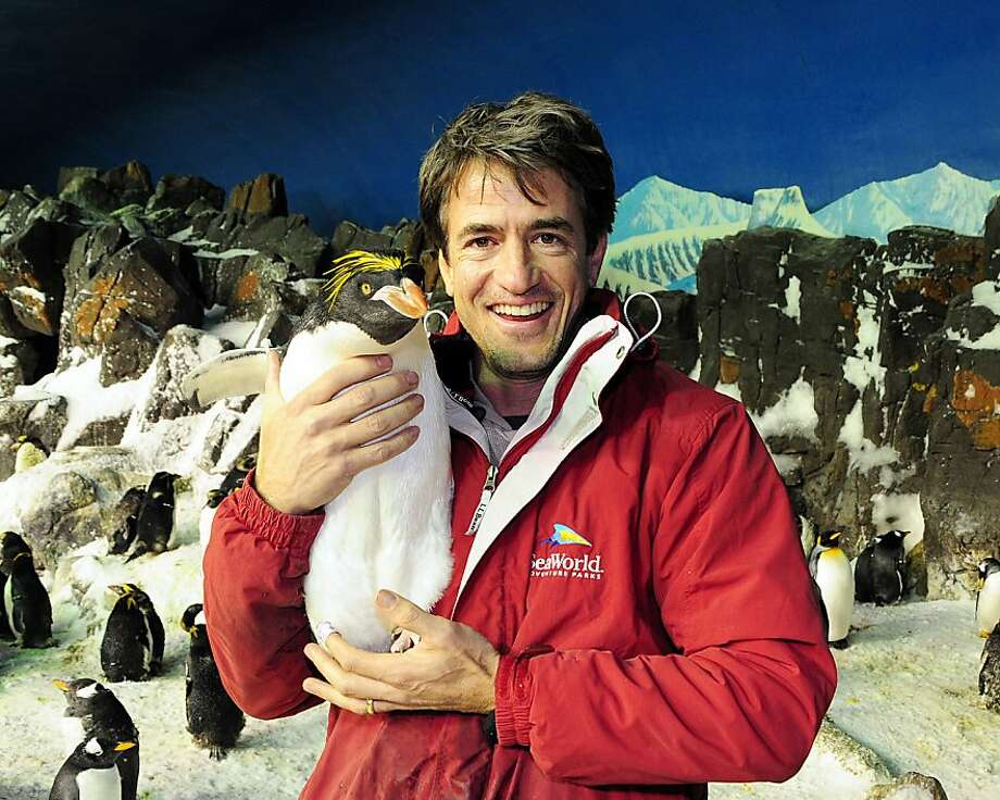 SAN DIEGO, CA - FEBRUARY 20:  In this handout image provided by SeaWorld San Diego, actor Dermot Mulroney holds a macaroni penguin during a behind-the scenes tour of SeaWorld's Penguin Encounter, which is home to more than 300 Antarctic and sub-Antarctic penguins representing five species, on February 20, 2012 in San Diego, California.  (Photo by Randy Pearson/SeaWorld San Diego via Getty Images) Photo: Handout, Getty Images