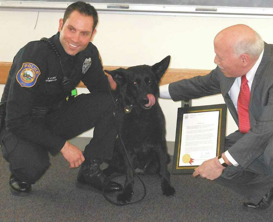 Lola, the Westport K-9, was honored Wednesday on her retirement from the town's police force after a decade. With the black German sheherd are her handler Officer Marc Heinmiller, left, and First Selectman Gordon Joseloff, who issued a commendation for the dog's service. Photo: Mike Lauterborn / Westport News contributed