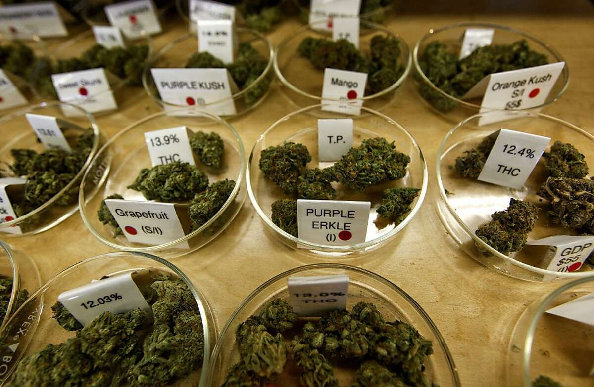 Several of the varieties of marijuana available at the Harborside Health Center in Oakland, Calif., on Tuesday Apr. 20, 2010. The company is dispensary of medical marijuana.