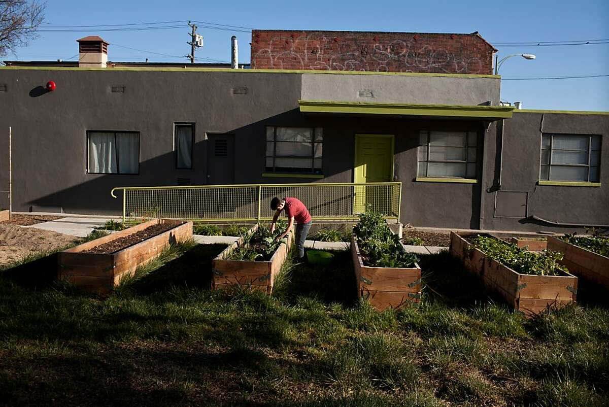Caleb Feldman gardens last month at the Digital Arts and Culinary Academy, which was opened by Oakland City Councilwoman Desley Brooks last year.