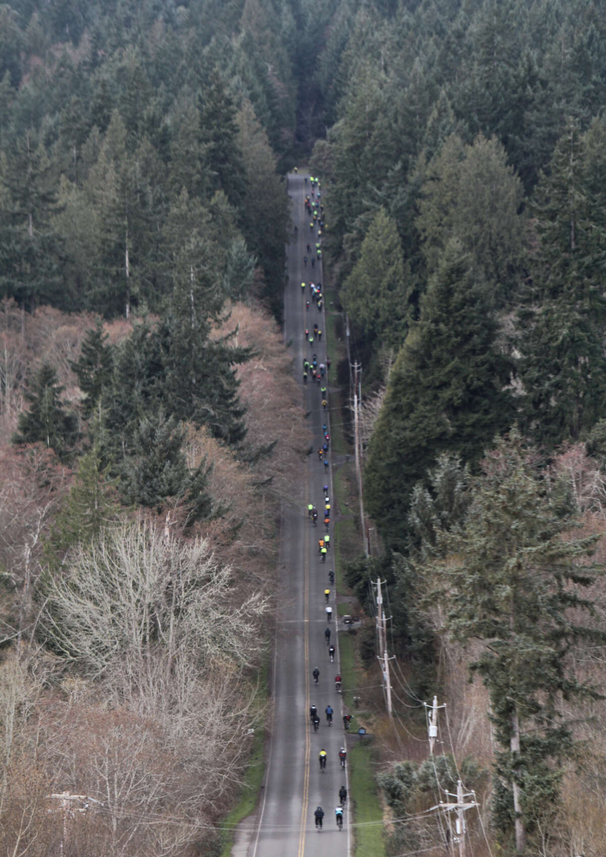 Cyclists climb a massive hill during the Chilly Hilly ride on Bainbridge Island on Sunday, Feb. 26, The Cascade Bicycle Club organizes the ride to encourage cyclists to stay active during the winter months and to support Bainbridge Island charities.