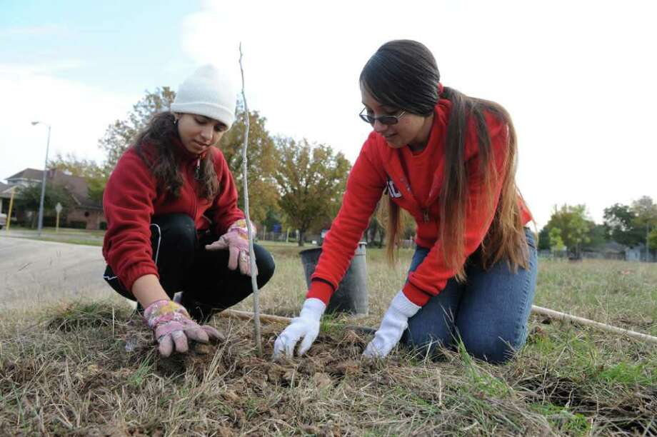 University of Houston students Sophia Zafar, left, and Madelyn Canas plant an oak tree during a recent tree planting along White Oak Bayou in Jersey Village by volunteers with Trees for Houston. Photo: Thomas Nguyen / Freelance