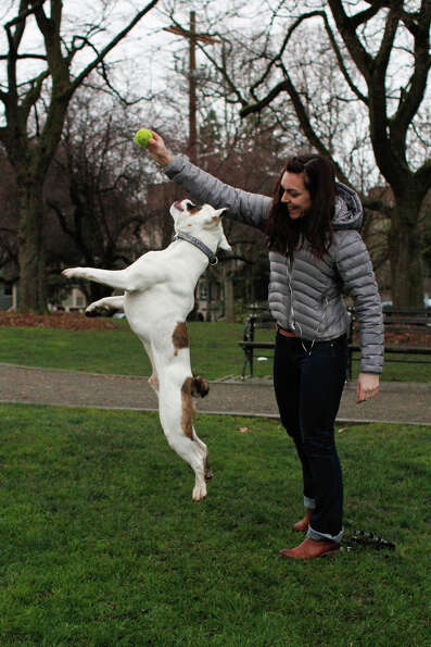 Meghen Lynch encourages her dog Paddington to leap in honor of Leap Year day at Cal Anderson Park in