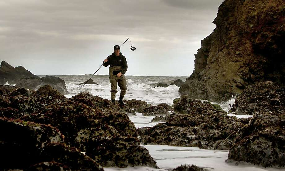 Sea forager, Kirk Lombard lands another Monkeyface Eel, with a technique know as poke poling, along the San Mateo County Coast, Ca., Ca. on Tuesday Feb. 28, 2012. Photo: Michael Macor, SFC