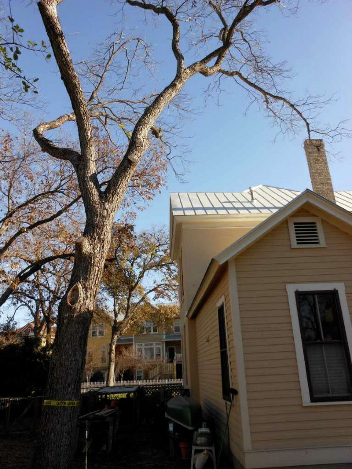 When a pecan tree began dropping limbs over their house, Ralph and Ruth Wells knew it had to come down. They plan to have artist Peter Zubiate make a dining table from the wood.