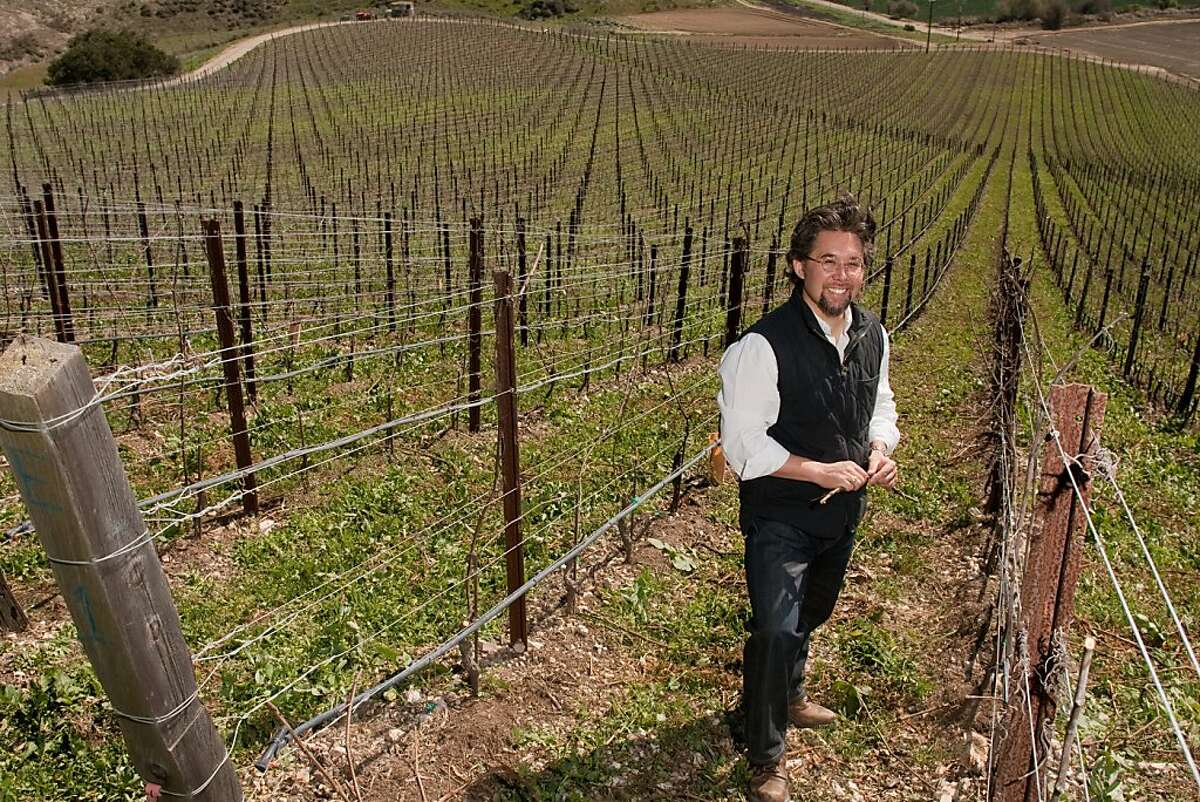 Winemaker Sashi Moorman in the Tempest vineyard off of Sweeney Road in Lompoc, Calif., an area known for its pinot noir. (photo by Joe Gosen / Special to the Chronicle)