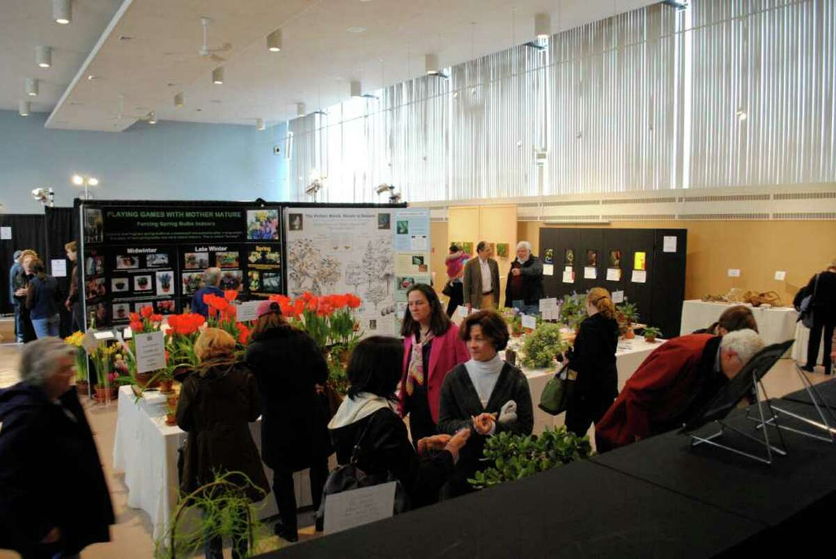 Christ Church in Greenwich held a Flower Show in their Parish Hall on March 3.